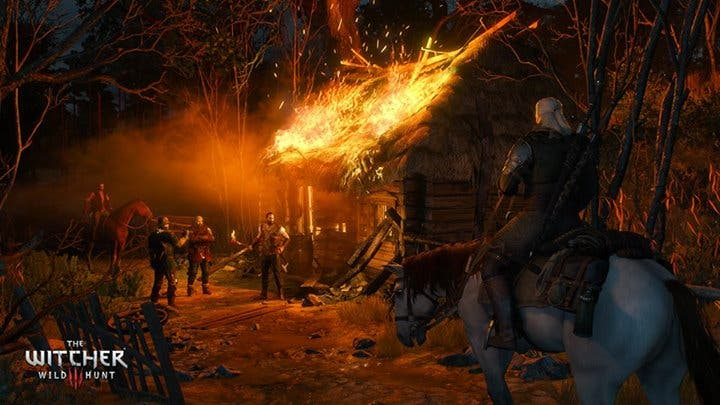 The_Witcher_3_13