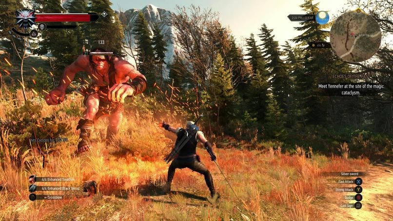 The_Witcher_3_41.re