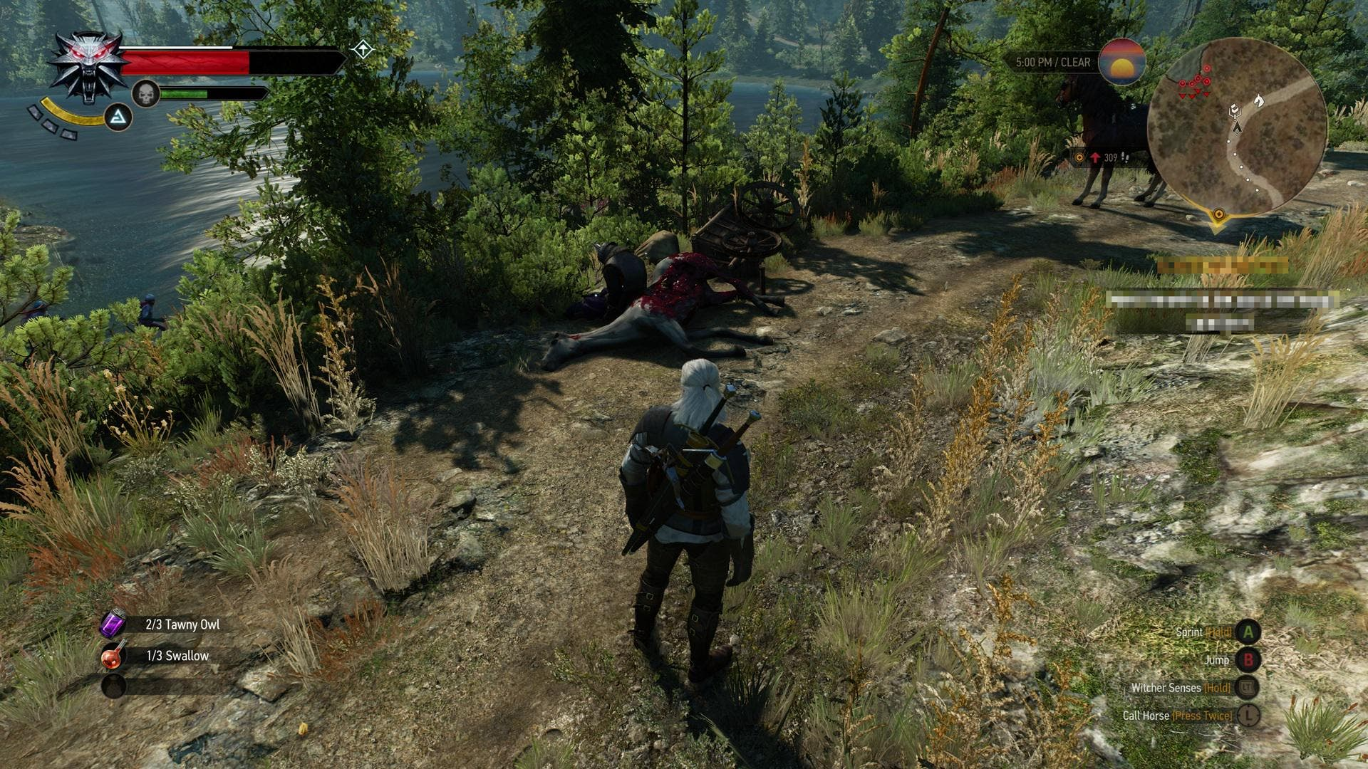 the witcher 3 (2)