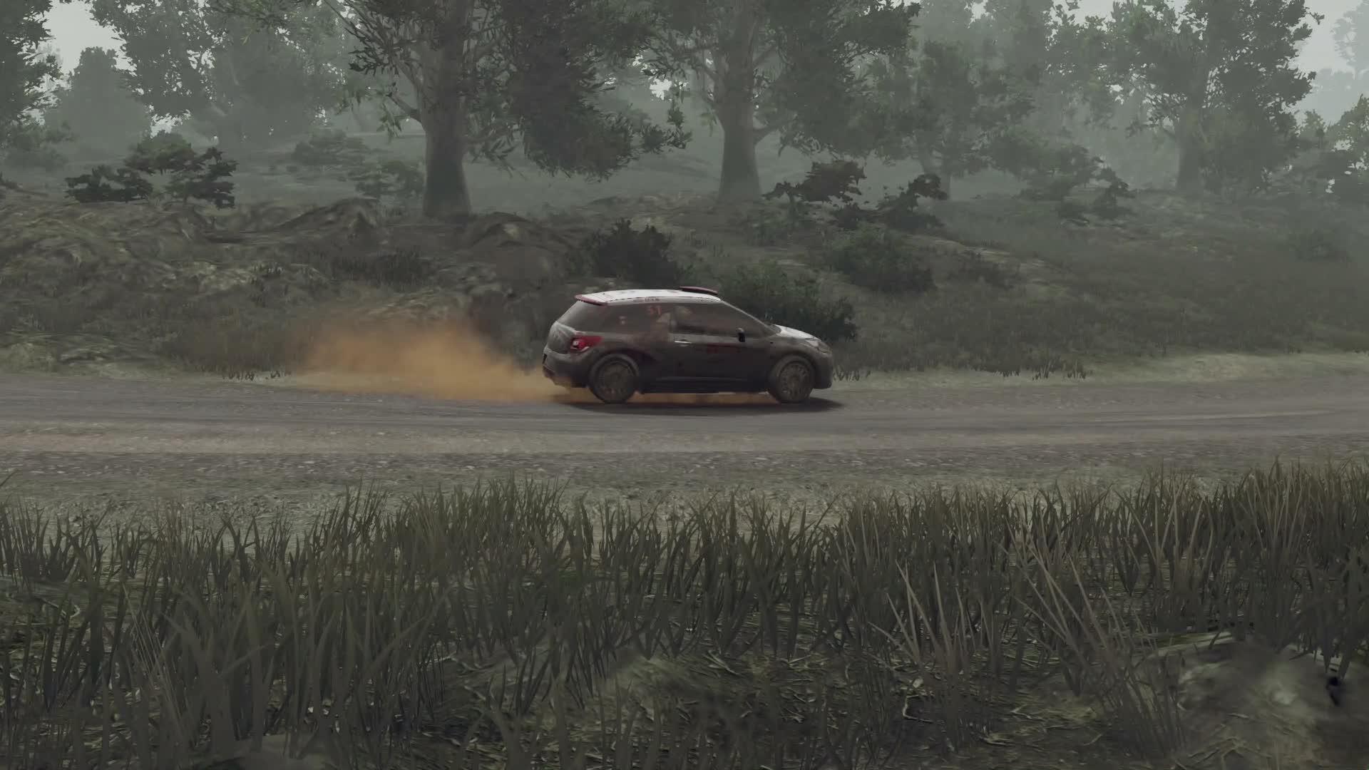 WRC (2)