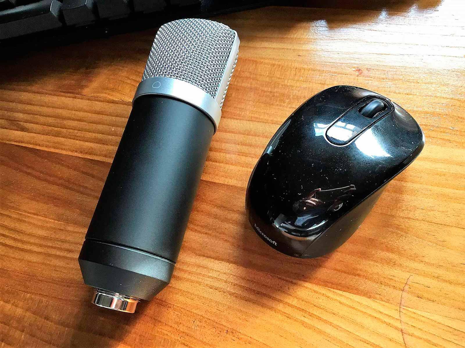 Tamaño del micrófono.
