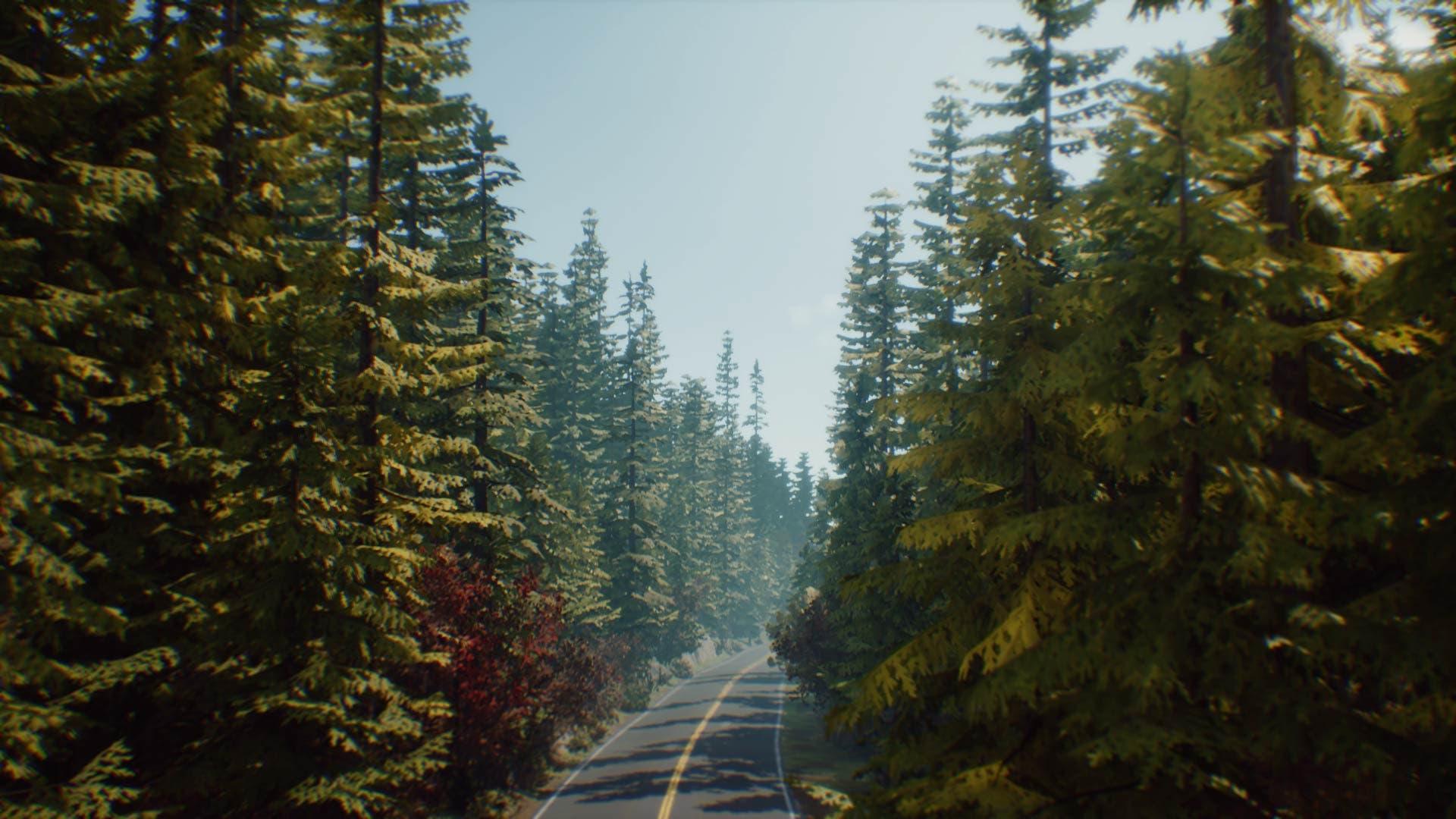 Análisis de Life is Strange 2: Episodio 1 - Xbox One 2