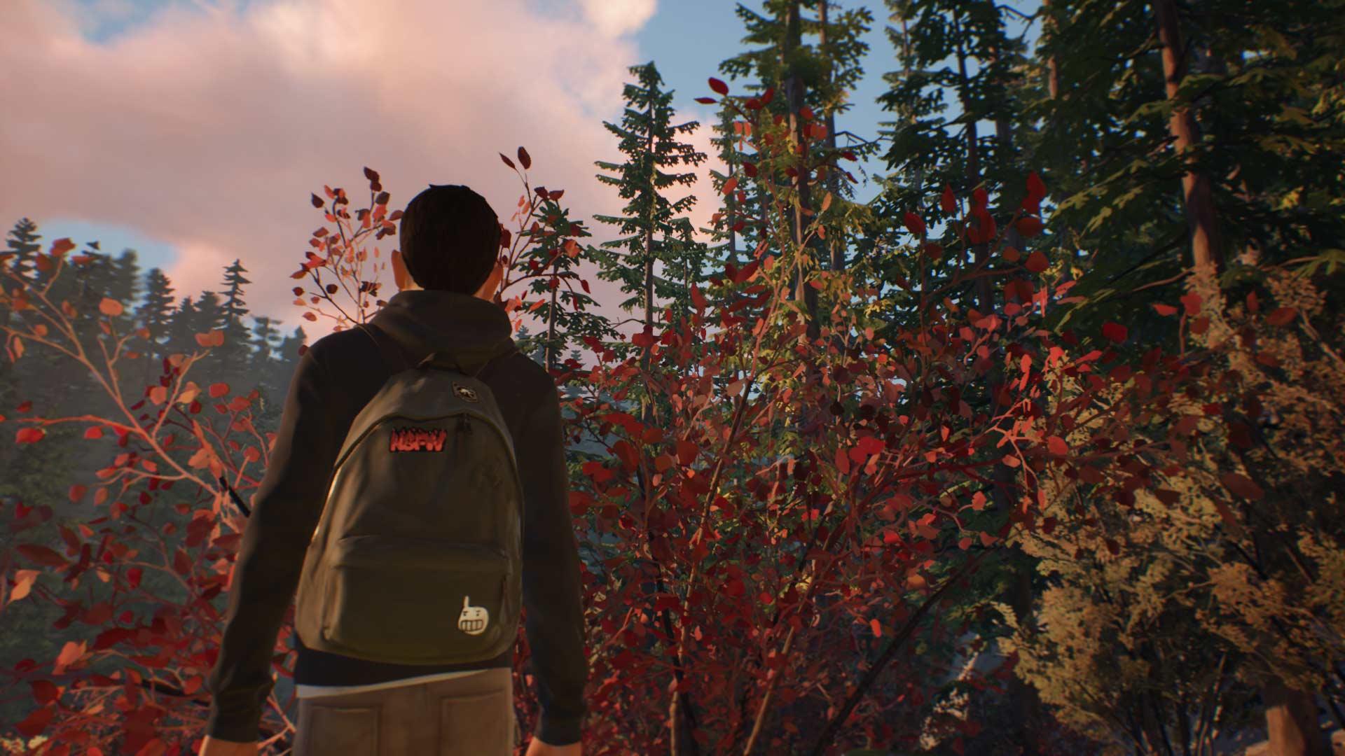 Análisis de Life is Strange 2: Episodio 1 - Xbox One 1