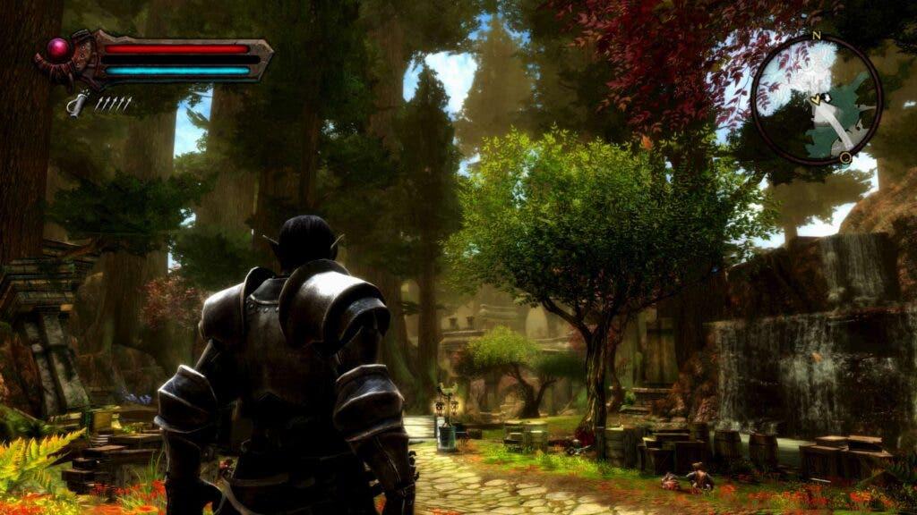 Kingdoms of Amalur: Re-Reckoning gameplay